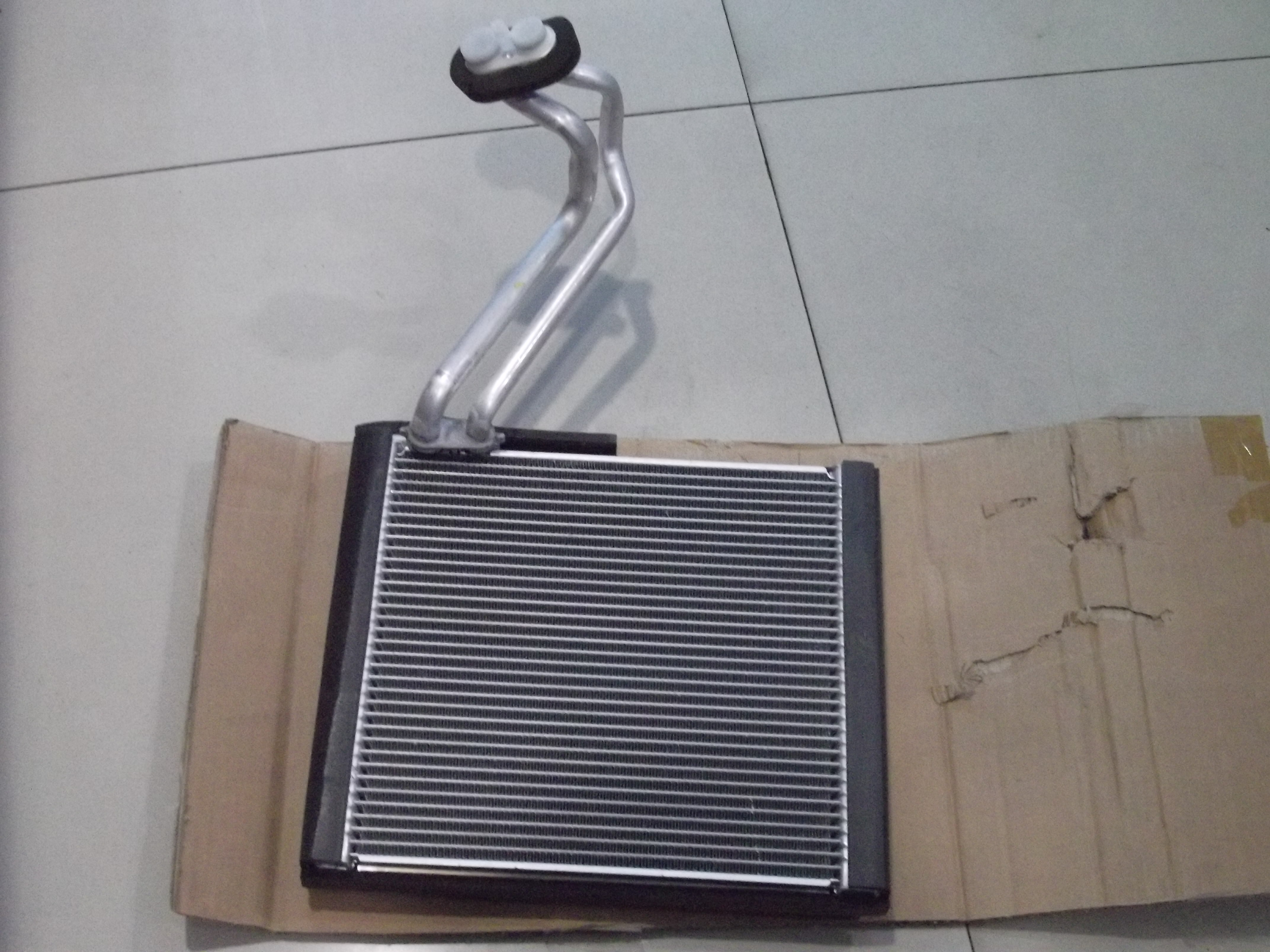evaporator all new xenia.jpg